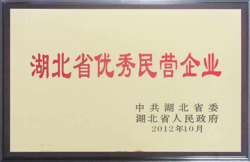 湖北省优秀民营企业